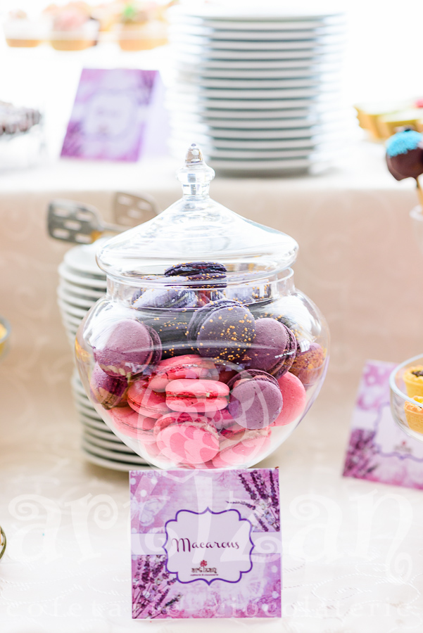 Candy Bar – Oana&Florin 1