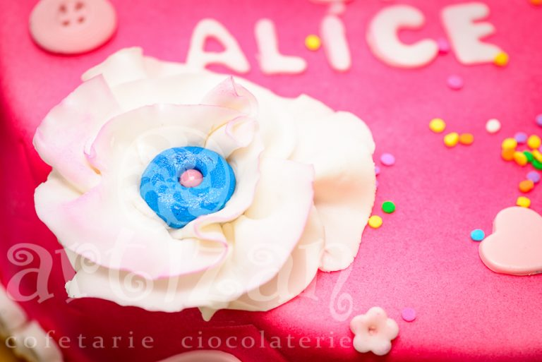 Tort aniversar – Alma & Alice 1