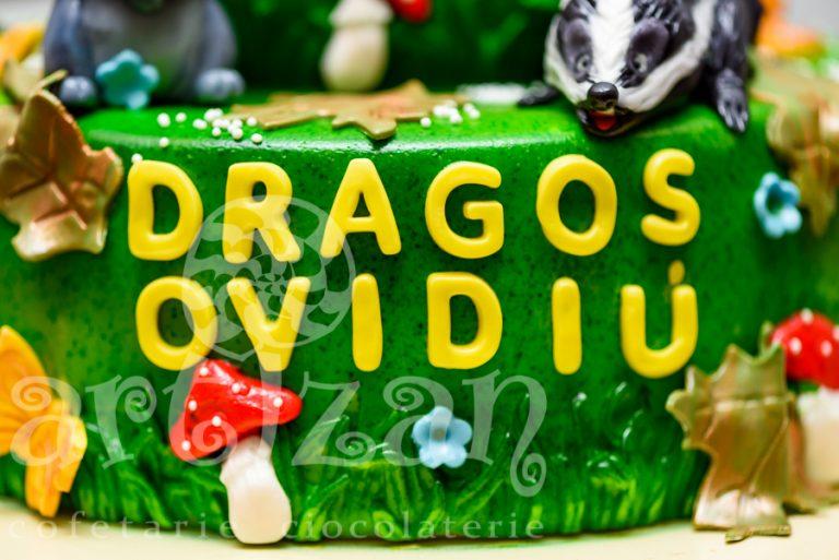 "Tort de Botez – ""Dragos Ovidiu"" 1"