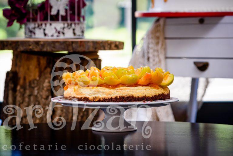 Cheesecake cu caise 1