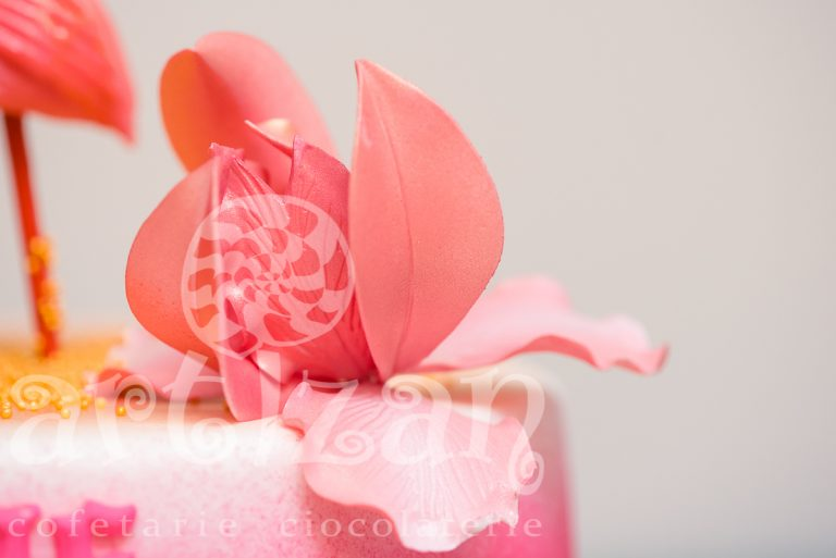 "Tort Aniversar ""Flamingo"" 1"