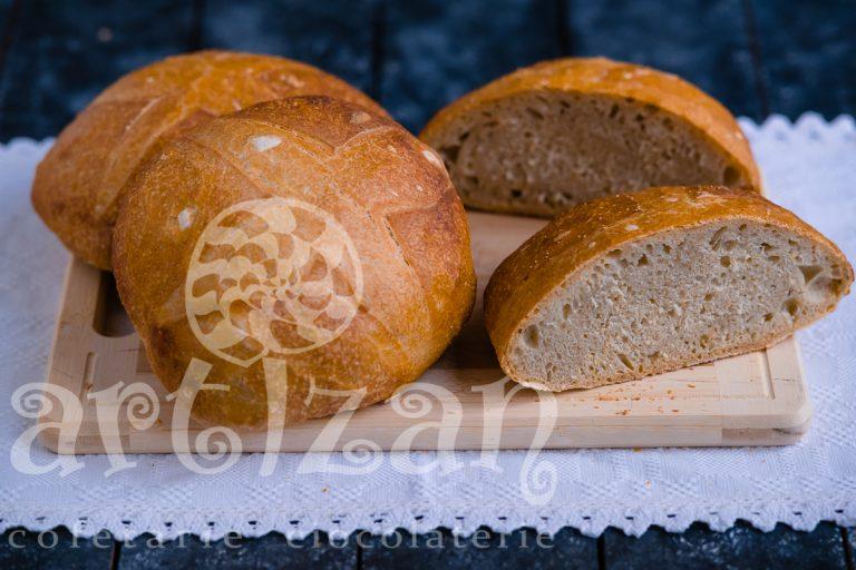 Pâinică de casă cu maia 1