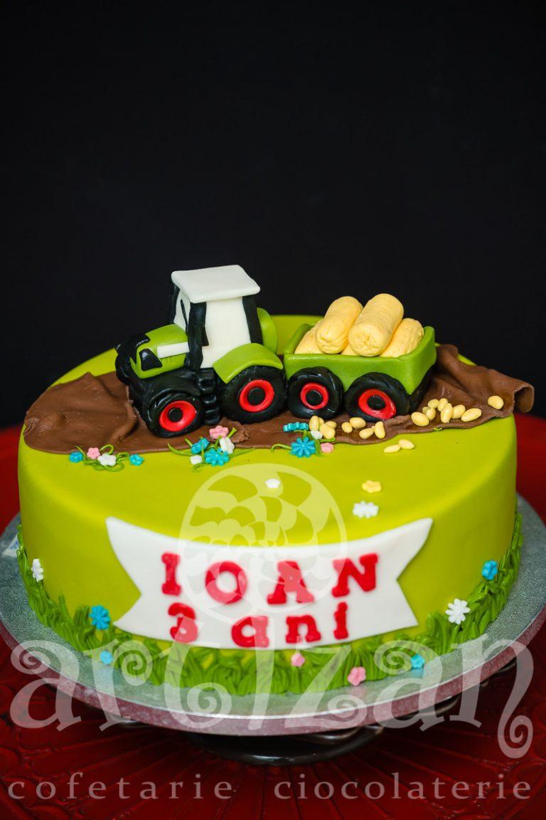 "Tort Aniversar ""Ioan"" 1"